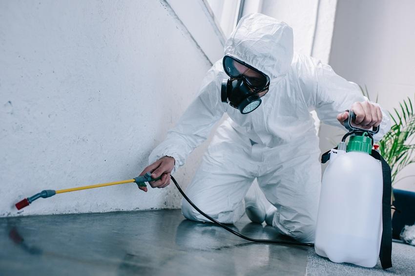 Aura Termite & Pest Control Total Termite & Pest Control