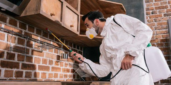 Glass House Termite & Pest Control Total Termite & Pest Control
