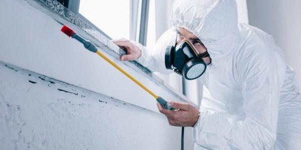 Nambour Termite & Pest Control Total Termite & Pest Control