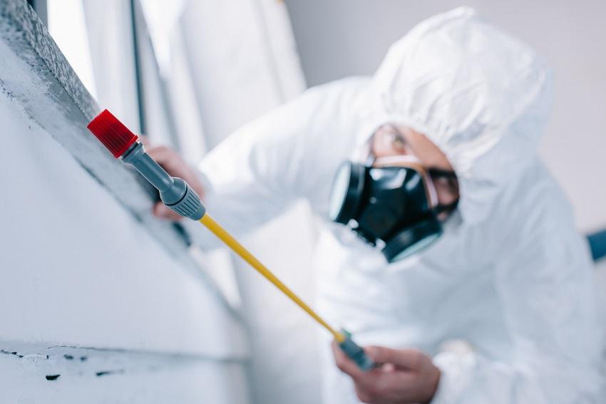Coolum Termite & Pest Control Total Termite & Pest Control