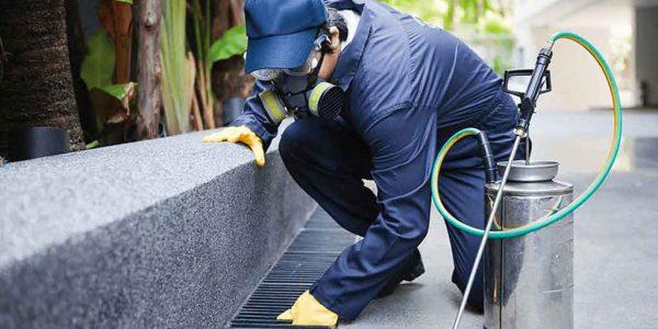 Brisbane Termite & Pest Control Total Termite & Pest Control
