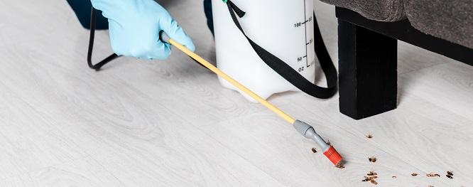Margate Termite & Pest Control Total Termite & Pest Control
