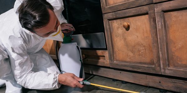 Landsborough Termite & Pest Control Total Termite & Pest Control