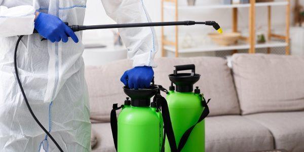 Bridgeman Downs Termite & Pest Control Total Termite & Pest Control
